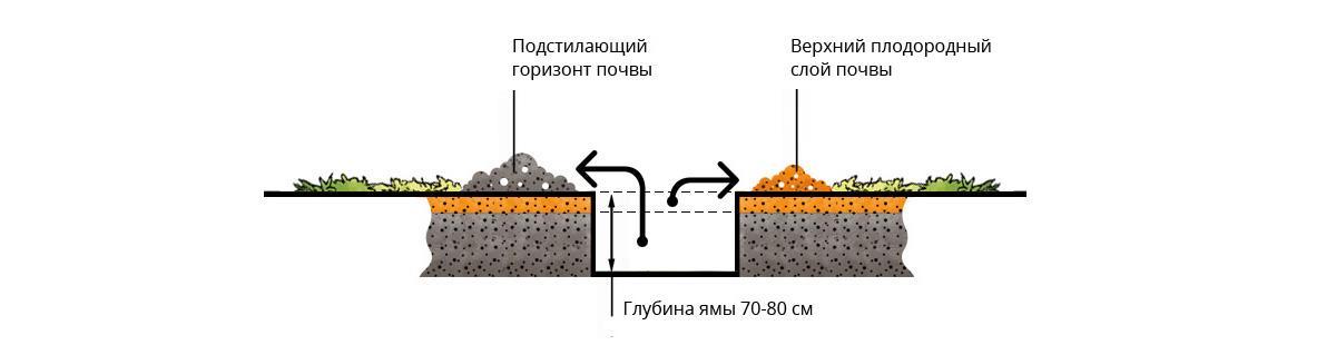 Выкопка ямы для посадки растений