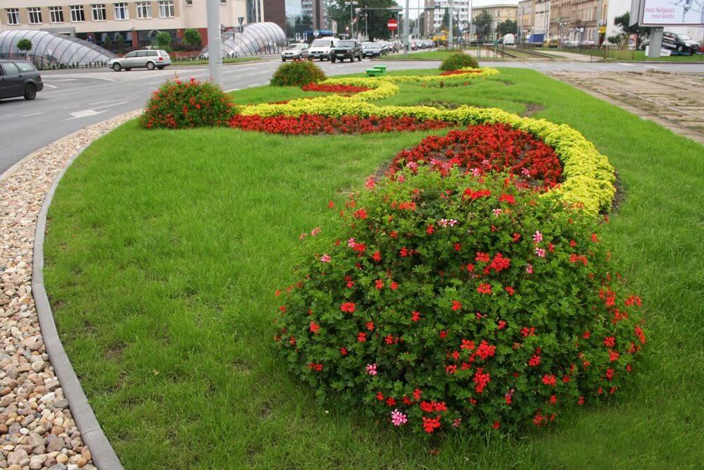 растения для городского озеленения фото